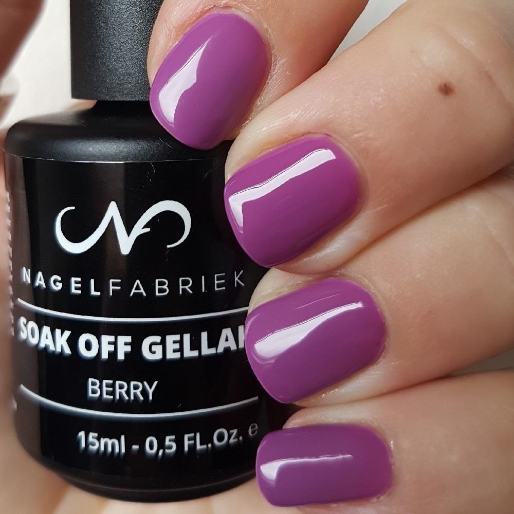Berry Gellak